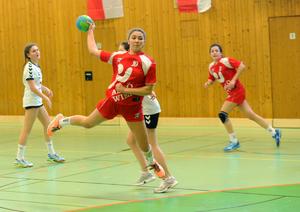 BM Handball_w 2016.jpg